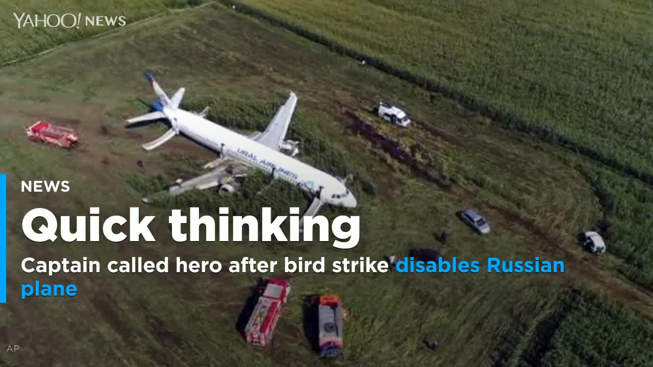 Captain called hero after bird strike disables Russian plane