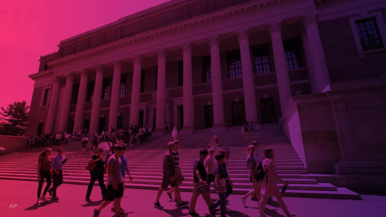 Dating en Harvard Law Student
